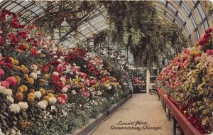 Chicago Illinois~Lincoln Park Conservatory Interior~Beautiful Flowers~1914 Pc