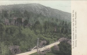 AVERILL , Vermont , 1900-10s ; Mt DRive