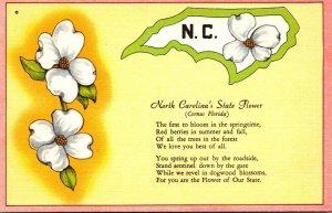 North Carolina State Flower Dogwood