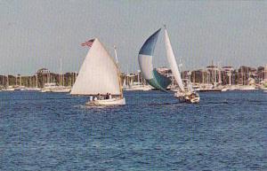 Rhode Island Black Island New Harbor