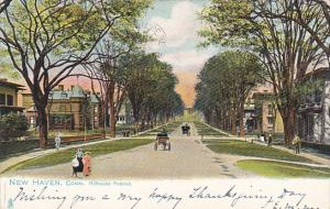 Hillhouse Avenue New Haven Connecticut 1905 Tucks