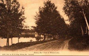 Maine Wilton Road Along Foot Of Wilson Lake 1907