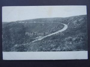 Surrey HINDHEAD c1903 Postcard by Frith