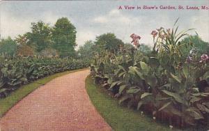 A View In Shaws Garden Saint Louis Missouri 1908