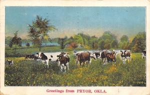 Pryor Oklahoma~Cows Graze in Meadow~Yellow Wildflowers~1934 Linen Postcard