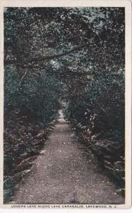 New Jersey Lakewood Lovers Lane Along Lake Carasaljo
