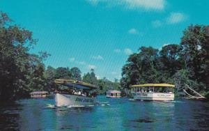 Florida Silver Springs Sightseeing Boats On Silver River