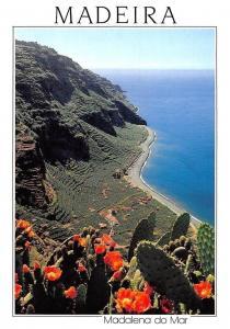 Portugal Madeira Madalena do Mar Panorama