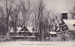 New York Moravia The June In Januery-Caswasco Artvue