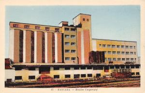 Mascara Algeria~Moulin Cooperative~Elevators by Railroad Tracks~1930s Litho PC
