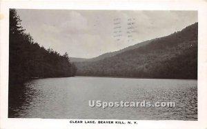 Clear Lake - Beaverkill, New York