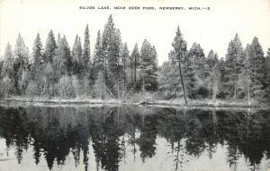 Newberry Michigan~Silver Lake~New Deer Park~1940s B&W Linen Postcard