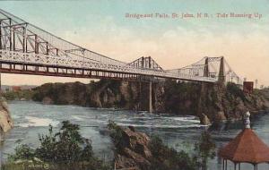 Tide Running Up, Bridge and Falls, St. John, New Brunswick, Canada, 1900-1910s
