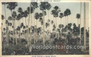 Argentina, República Argentina Palm Trees Gran Chaco Gran Chaco Palm Trees