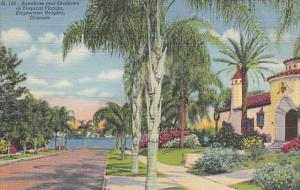 Street Scene Edgewater Heights Orlando Florida Curteich