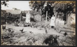 Two Farm Women Feeding Chickens Near House RPPC Unused c1910s