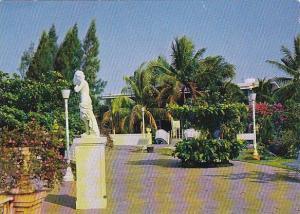 Thailand Rose Garden