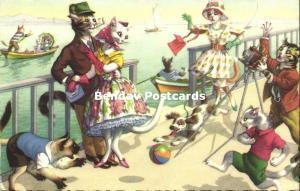 Dressed Cats, Boulevard Sea Camera Photographer (1962) Coloprint 2268/1
