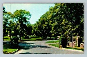 Trenton NJ- New Jersey, Cadwalader Park Entrance, Trees, Parks, Chrome Postcard