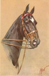 H. Rirst. Beautiful horse Old vintage Swiss postcard