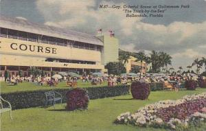 Gay, Colorful Scene at Gulfstream Park, The Track-by-the-Sea Hallandale, Fl...