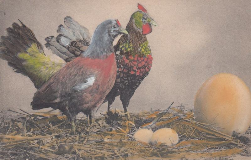 2 Chickens & Nest, Color #2, 1901-07