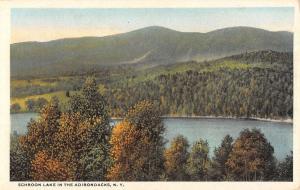 Schroon Lake New York Adirondacks Birdseye View Antique Postcard K58215