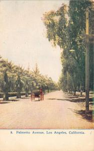 Los Angeles California~Palmetto Avenue~Horse Wagon Passing by Palm Trees~1909 PC
