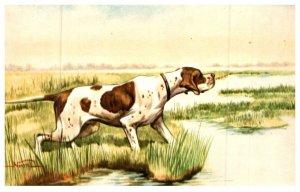 Dog ,   Springer Spaniel on Point , artist signed