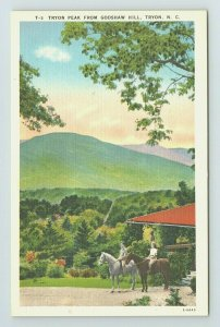 Tryon Peak Godshaw Hill Horseback Riding Mountain North Carolina NC Postcard