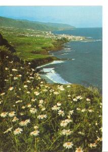 Postal 029697 : Puerto de la Cruz (Tenerife). Vista de la Costa Norte y Ciuda...