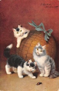 Cat Post Card Cats and Lady Bug Unused