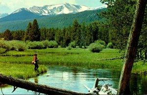 Montana Miner's Creek Near Jackson Fishing Scene