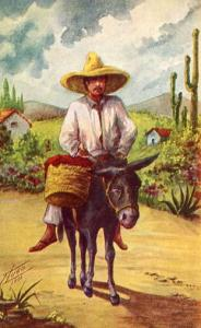 Mexico - Mexican man on donkey