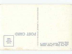 Linen Bob Jones College - Greenville South Carolina SC E1880