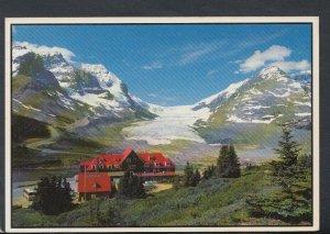 Canada Postcard - Athabasca Glacier, Columbia Icefield, Jasper National.. T3620