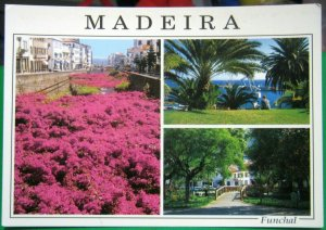 Portugal Madeira Funchal - unposted