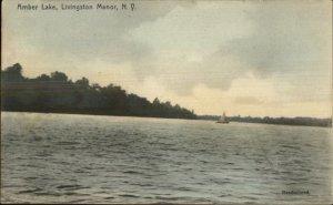 Livingston Manor NY Amber Lake c1910 Postcard