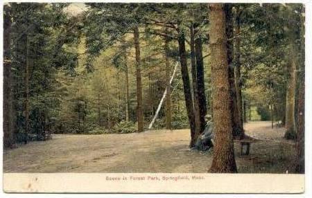 Scene In Forest Park, Springfield, Massachusetts, PU-1907
