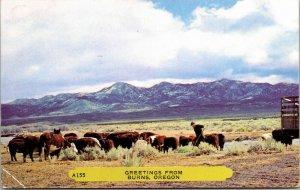 Vintage 1950s Chrome Postcard - Greetings From Burns, Oregon Stinker Hunting