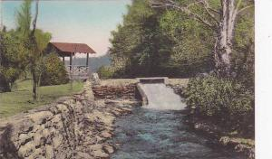 The Brookhaven On Route 611, Tannersville, Pennsylvania, 1900-1910s