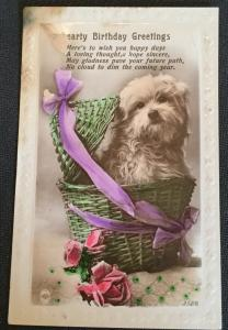 "Postcard Unused writing on back ""Hearty Birthday Dog/Greetings"" Flower LB"