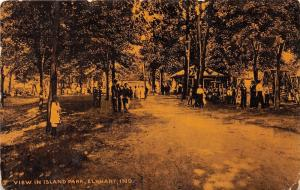 Elkhart Indiana~Island Park Scene~Lots of People under Trees~c1910 Postcard
