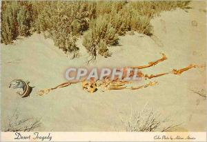 Postcard Modern Tragedy Nevada Desert