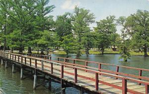 Southeast Arkansas~ Fishermans Paradise~Bridge On Lake Chicot~1960 PC
