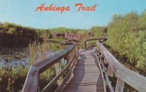 Anhinga Trail - Everglades National Park - Florida