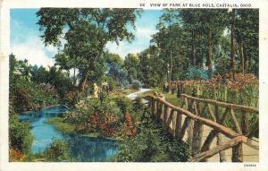 Castalia Ohio~View Of Park At Blue Hole~Rustic Bridge~1930 Postcard