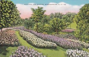 North Carolina Winston Salem Municipal Iris Gardens