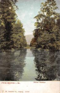 Freiburg im Breisgau Kleiner Waldsee Lake Lac Landscape