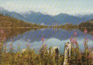 Canada Susan Lake Looking At The Selkirk Mountains At Golden British Columbia